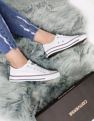 Converse All Star Low White, 36